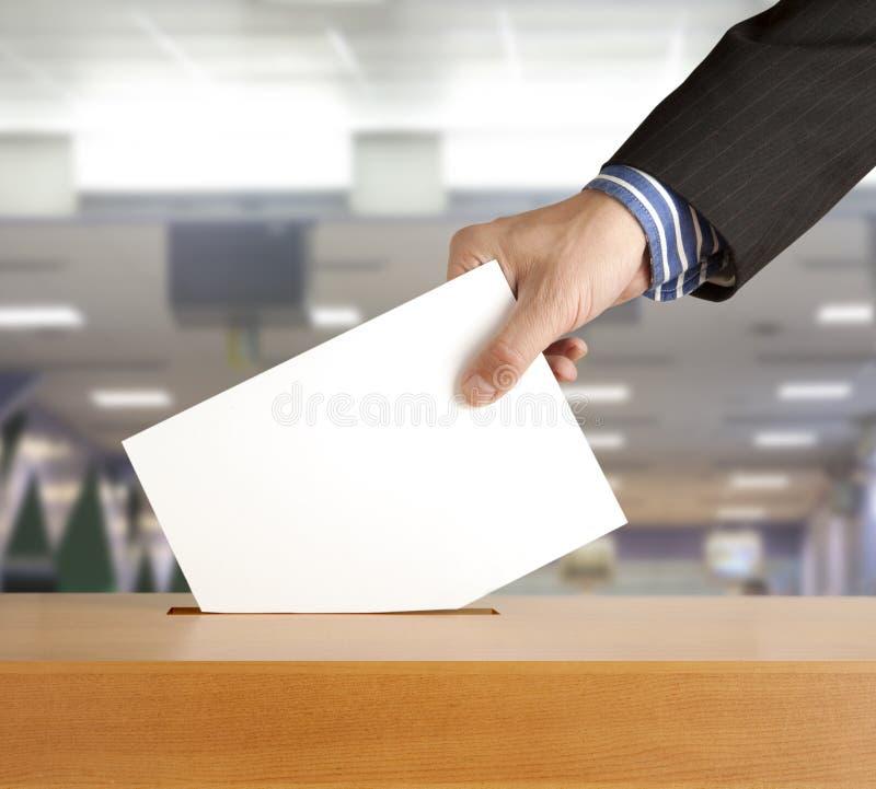 Stem stock foto