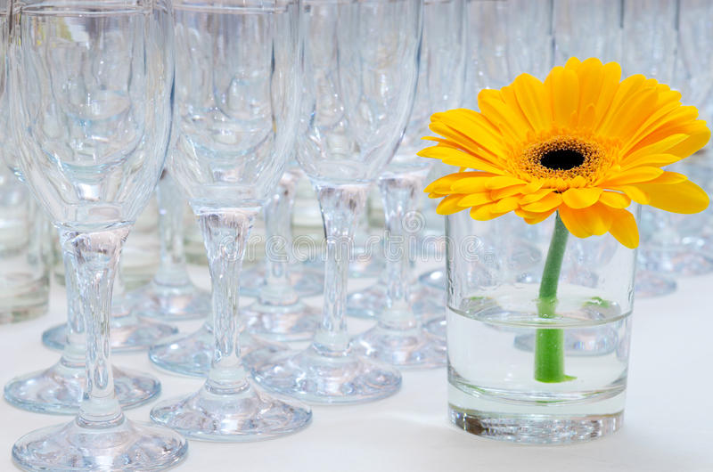 Download Stemwares on buffet table stock photo. Image of daisy - 22416400