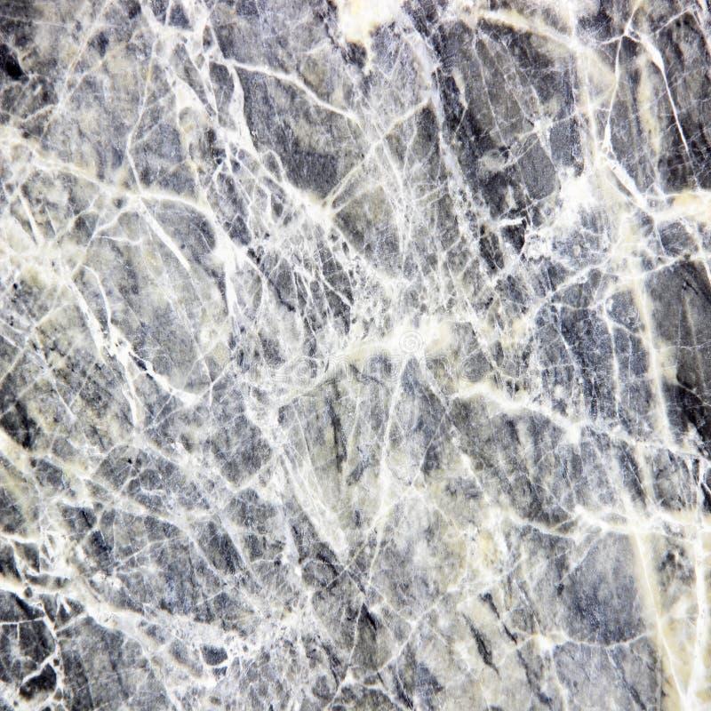 Sten för golv för marmortexturbakgrund dekorativ royaltyfria foton
