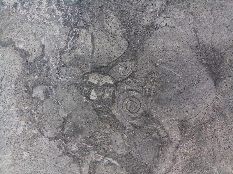 Sten för marmor för för Closeupyttersidagrå färger eller svart arkivbild