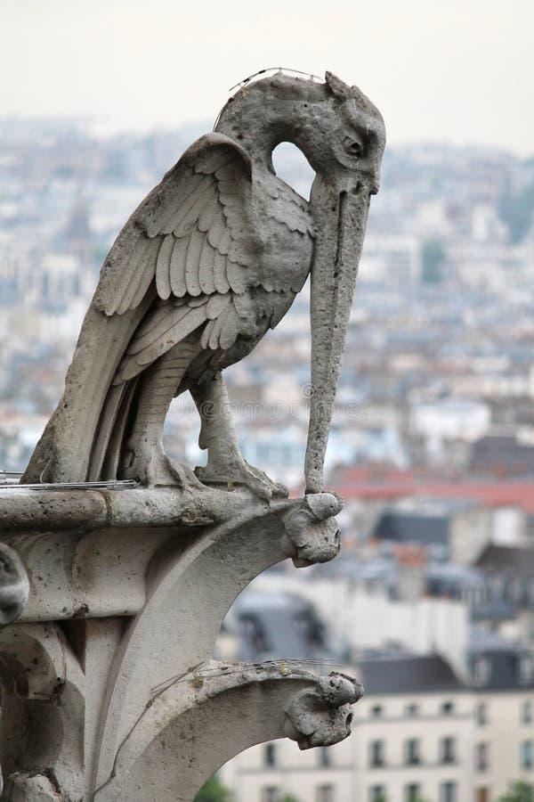 Stena fågelvattenkastaren, Notre Dame Cathedral, Paris, Frankrike royaltyfri bild