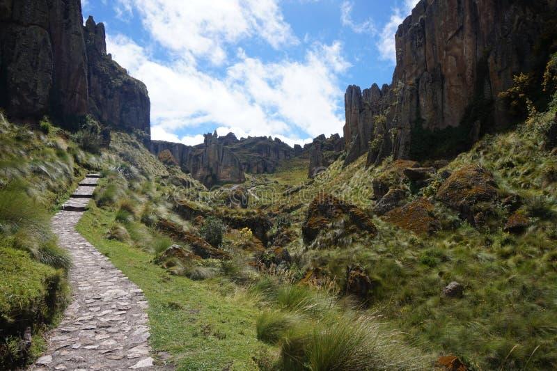 Stena skogen av Cumbemayo som lokaliseras i Cajamarca Peru? arkivfoto