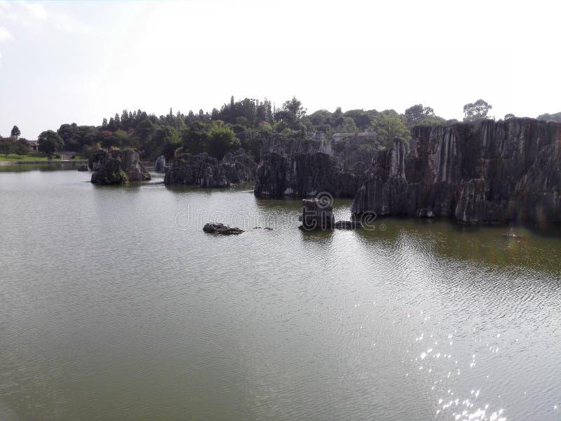 stena skogen i floden arkivbilder