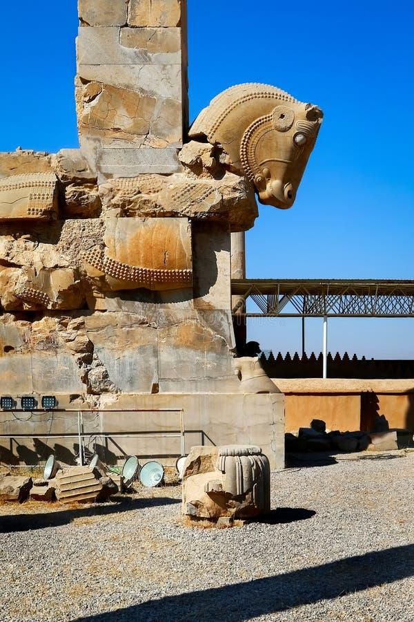 Stena skulptur av en häst i Persepolis mot en blå himmel med moln iran persia royaltyfri bild