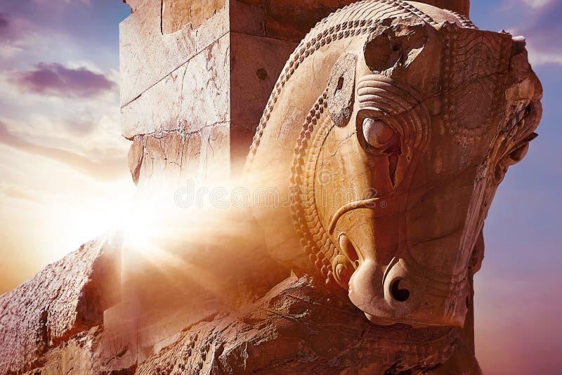 Stena skulptur av en h?st i Persepolis mot en soluppg?ng iran persia shiraz Str?lar av ljus royaltyfri bild