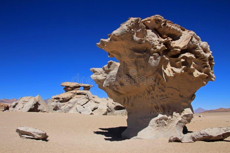 Stena trädet eller arbol de piedra i öknen av Bolivia royaltyfria bilder