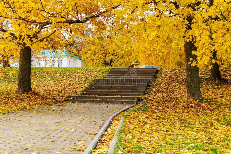 Stena trappuppgången i parkera som beströs med gula höstsidor Hösten landskap arkivbild