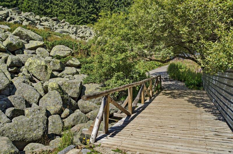 Stenar för granit för unik stenflod stora på den steniga floden med träbron i det Vitosha nationalparkberget arkivbilder