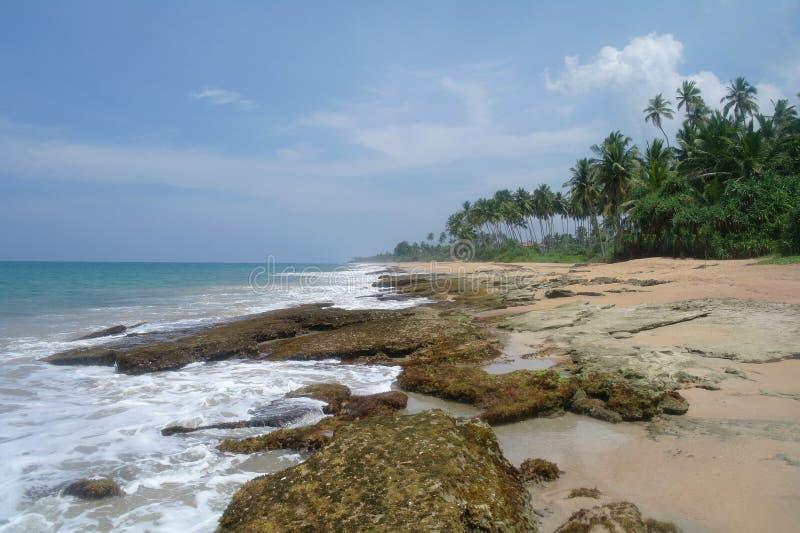 Stenar på den idylliska stranden i Sri Lanka royaltyfri bild
