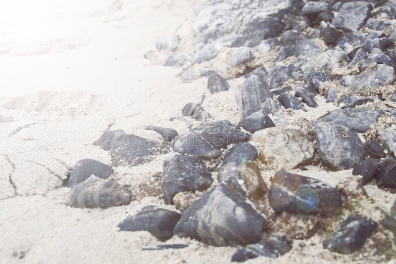 Stenar på den sandiga kusten vid havet royaltyfria foton