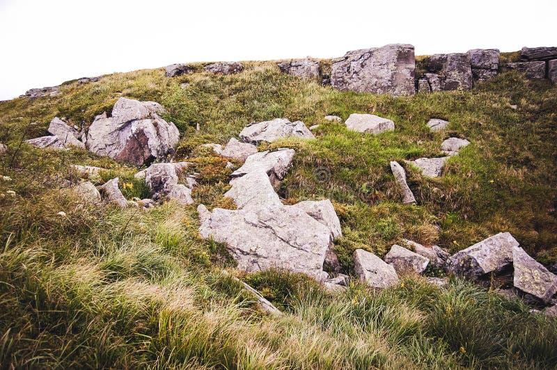 stenar på fältet royaltyfria bilder