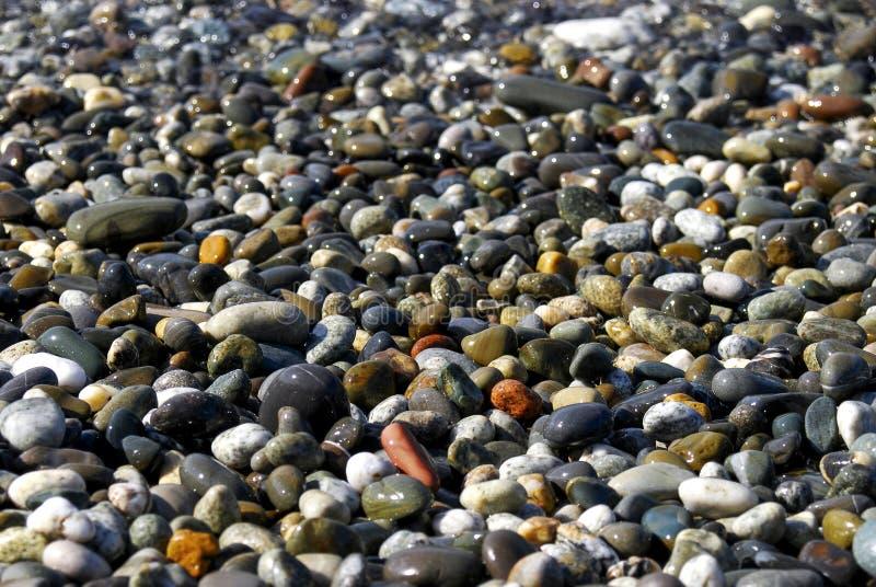 Stenar på stranden royaltyfria foton