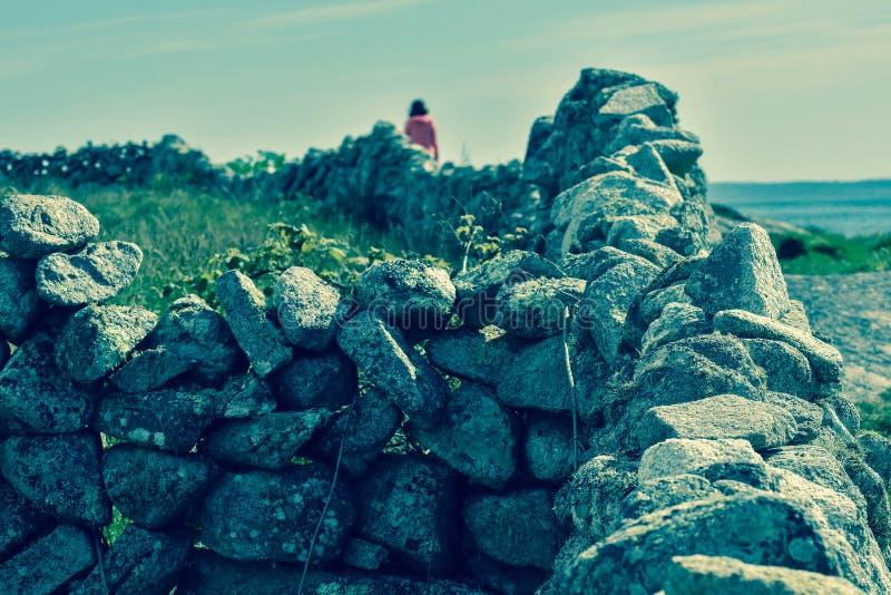 Stenar på stranden fotografering för bildbyråer