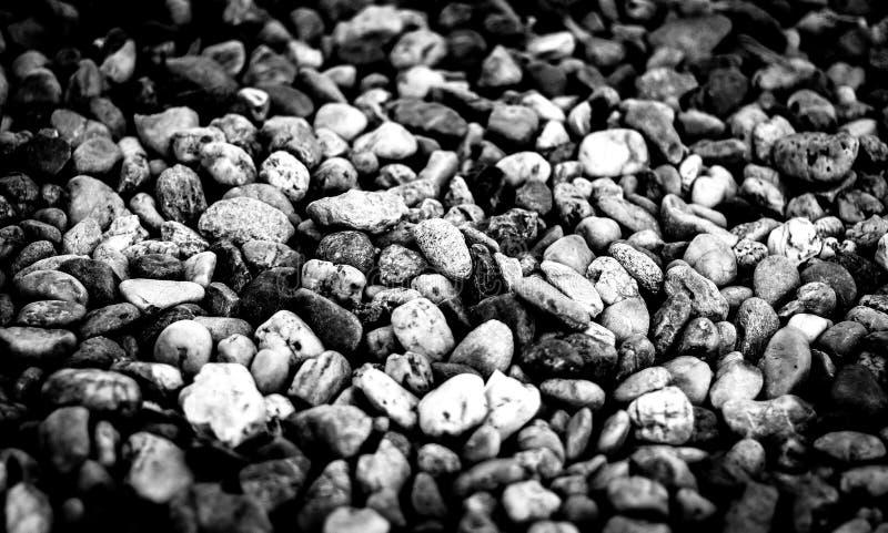 Stenar på stranden i svartvitt royaltyfri foto
