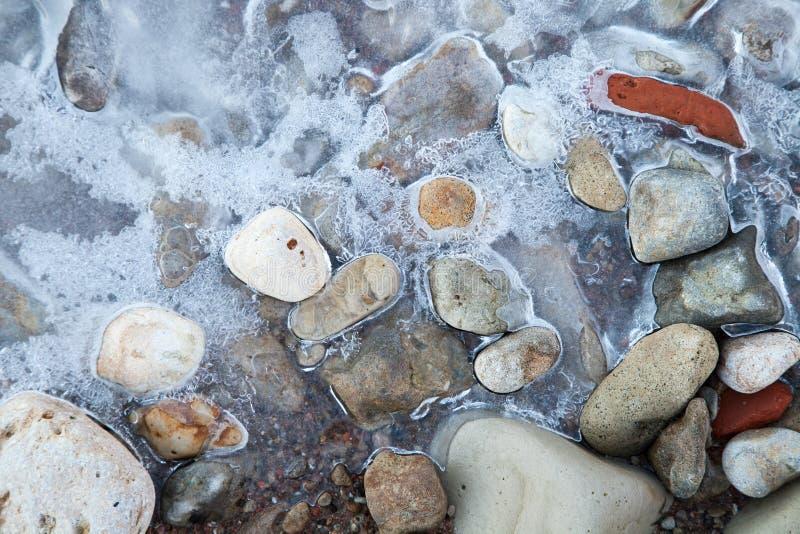 Stenar på stranden under isen royaltyfri foto
