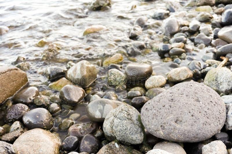 Stenar vid floden royaltyfri foto