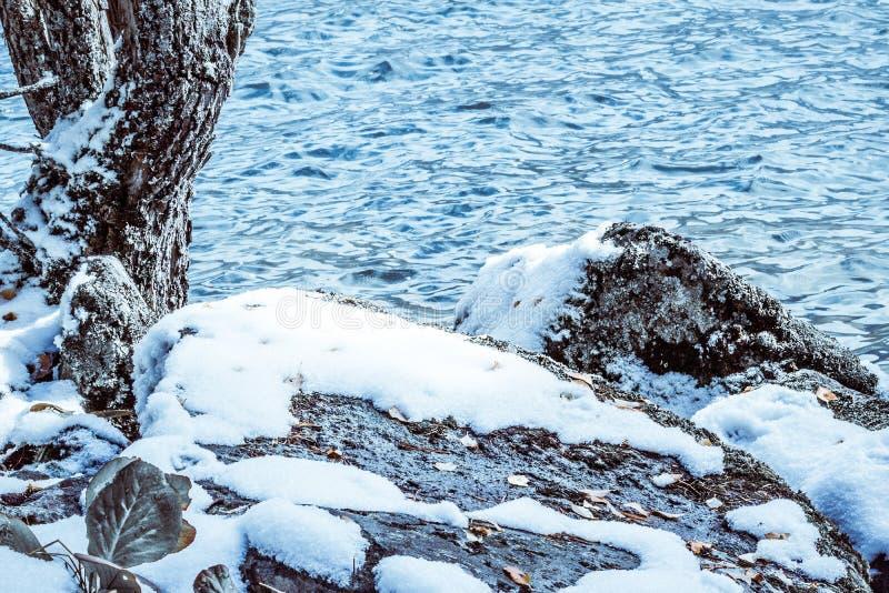 Stenarna och trät under snö arkivbilder
