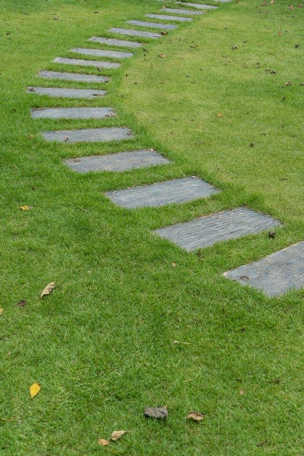 Stenbana på grönt gräs arkivfoto