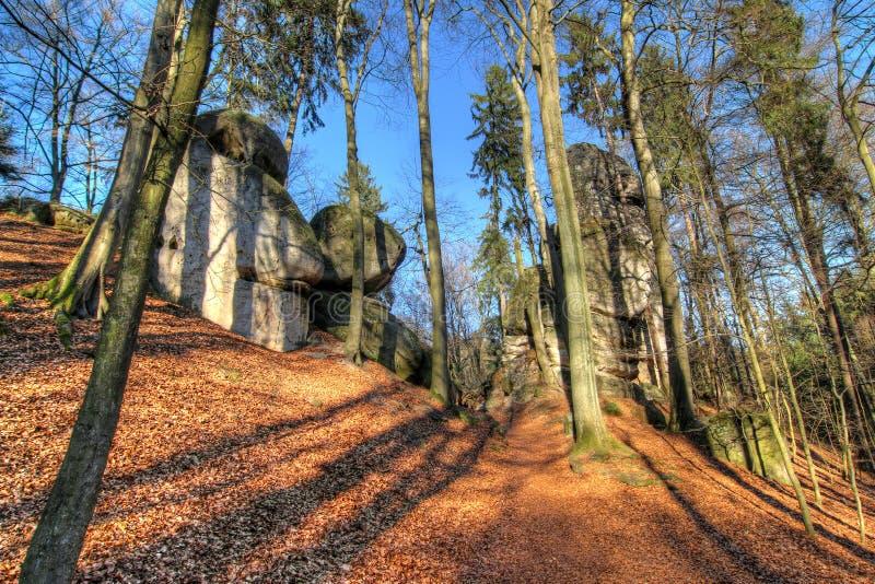 Stenblock på skogbanan i bohemiskt paradis royaltyfria foton