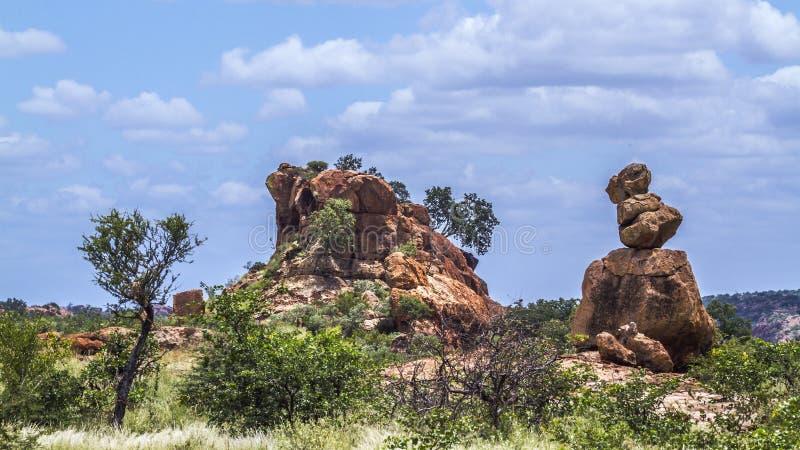 Stenblock vaggar i den Mapungubwe nationalparken, Sydafrika arkivfoton