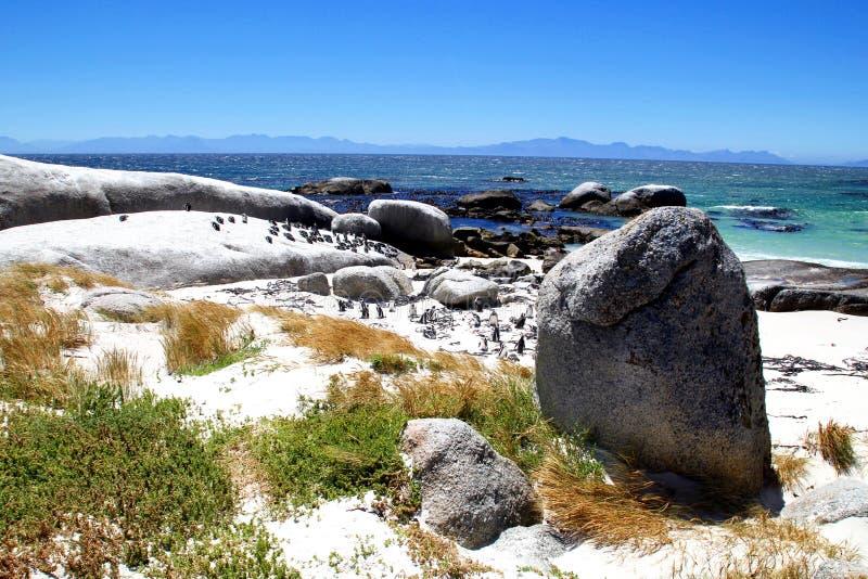 Stenblockstrand i Cape Town royaltyfri fotografi