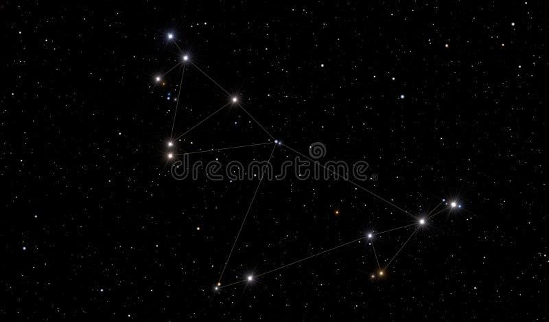 Stenbockenkonstellationen arkivbild