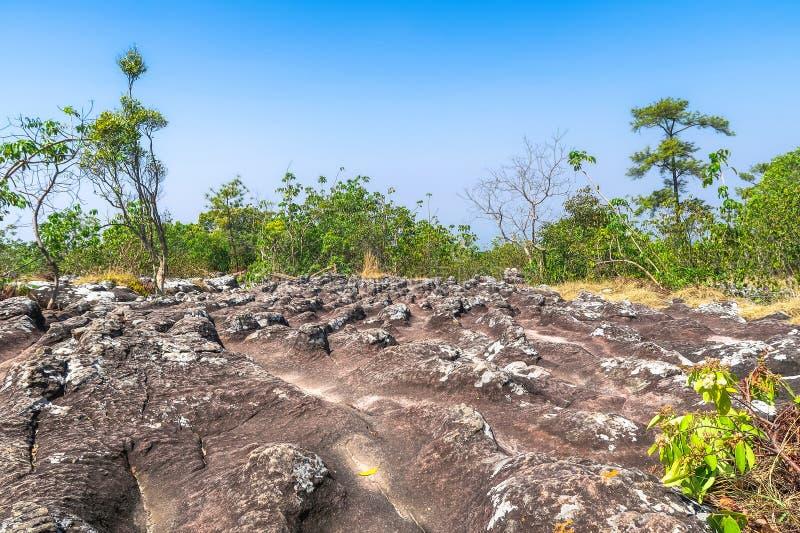 Stenborgg?rd Lan Hin Teak, Phu Hin Rong Kla nationalpark, Phitsanulok, Thailand royaltyfria bilder