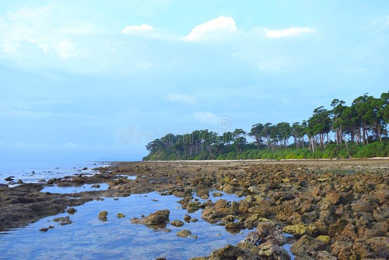 Stenen bij Strand met Kust Bos en Blauwe Hemel op Achtergrond - Landschap bij het eiland van Neil, de Eilanden van Andaman Nicoba royalty-vrije stock afbeeldingen