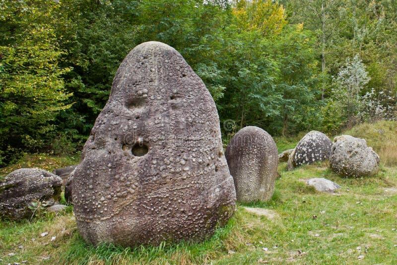 Stenen die groeien stock foto's