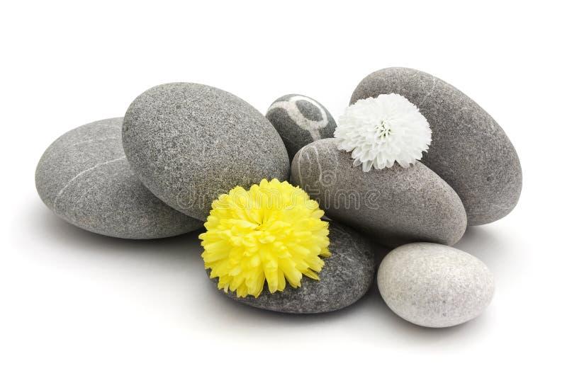 Stenen en bloemen royalty-vrije stock foto's