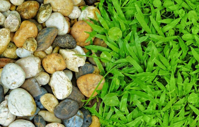 Stenen en de achtergrond van de grastextuur stock foto