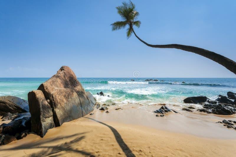 Stenen en palmen op een zandig strand van Hikkaduwa in Sri Lanka royalty-vrije stock foto's