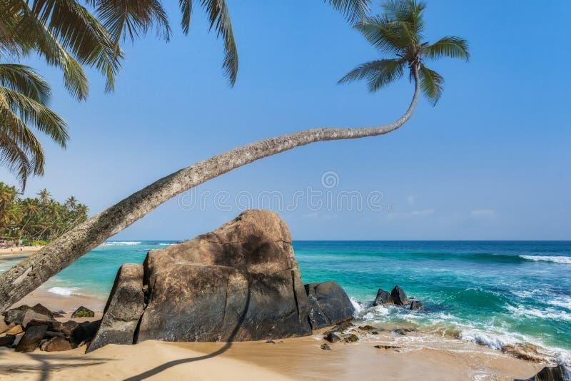 Stenen en palmen op een zandig strand van Hikkaduwa in Sri Lanka stock foto's