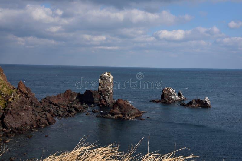Stenen in oceaan op seopjikoji, Seogwipo-stad, Korea stock afbeeldingen