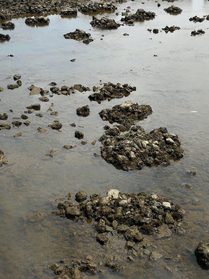 Stenen op de meander royalty-vrije stock fotografie
