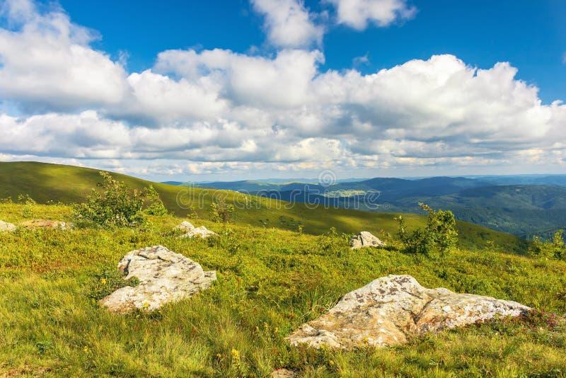 Stenen op grasrijke alpiene weide royalty-vrije stock foto