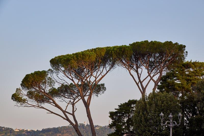 Stenen sörjer i Rome fotografering för bildbyråer
