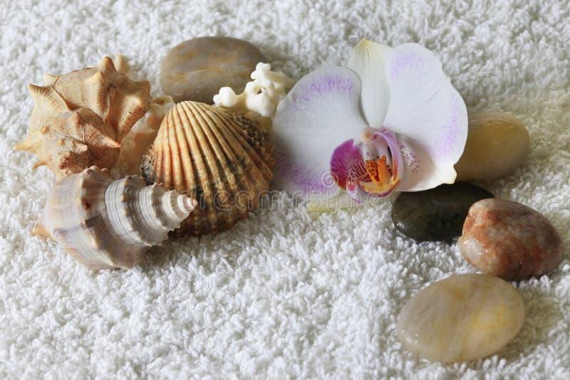Stenen voor massage stock foto's