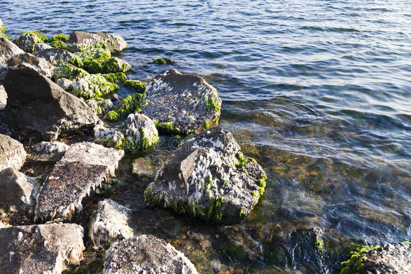 Stenen in water stock foto's