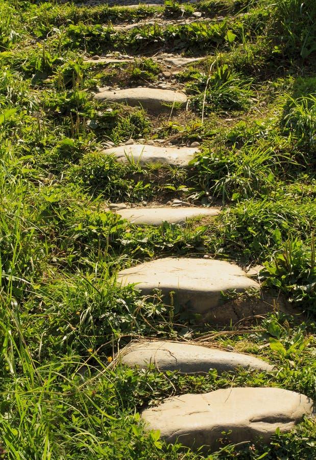 Stengångbana i den meditativa stengångbanan för trädgård arkivfoton