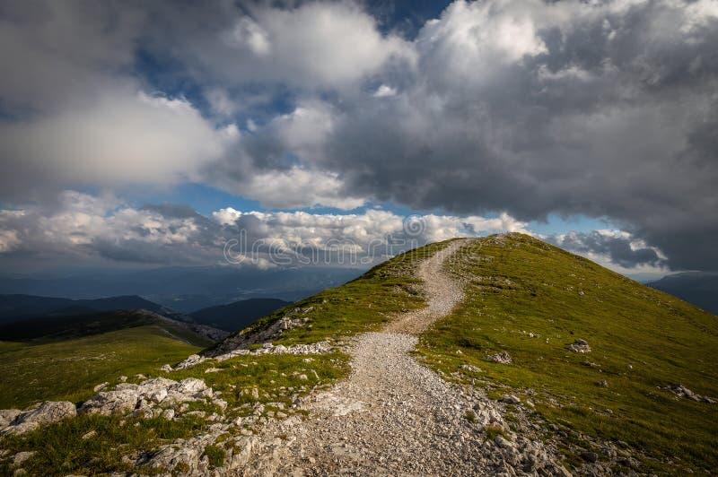 Stenig bana som omges av gräsängen till överkanten av Klosterwappen, högst maximum av Schneeberg, med scenisk, molnig blå himmel royaltyfri fotografi