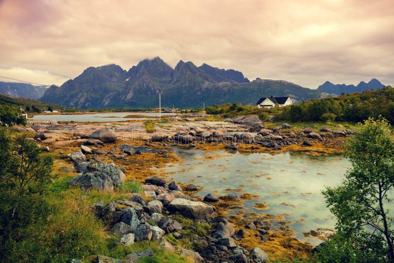 Stenig bank i afton Härlig natur av Norge fotografering för bildbyråer