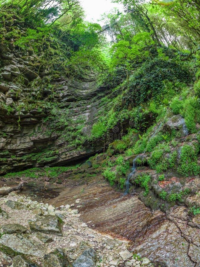 Stenig bergssida med strömmar som flödar längs den royaltyfri fotografi