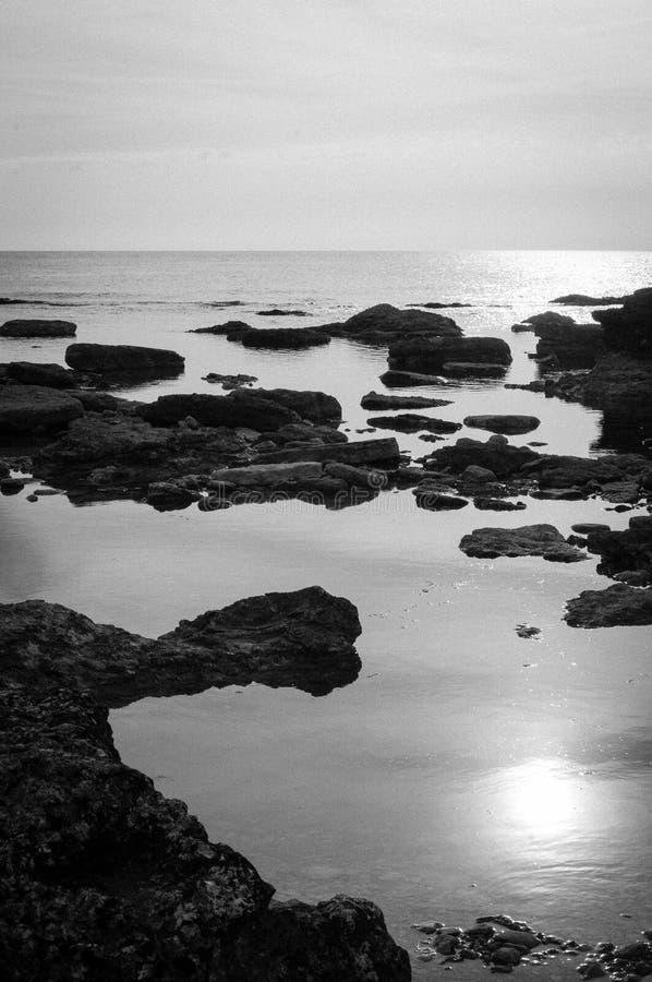 Stenig havskust i Gotland Sverige, svart & vit royaltyfri foto