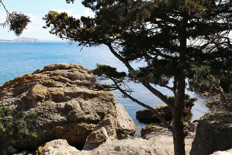 Stenig kust av av Black Sea arkivfoton