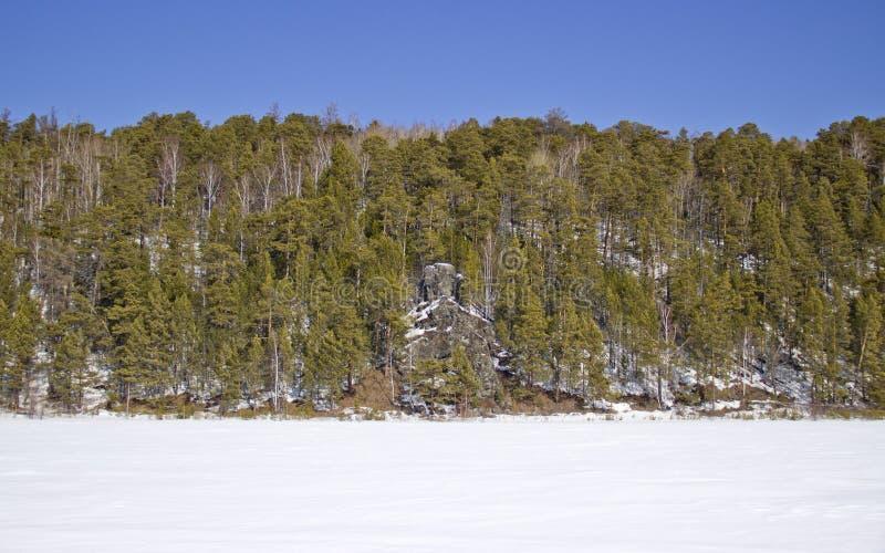 Stenig kust av den djupfrysta floden royaltyfri bild
