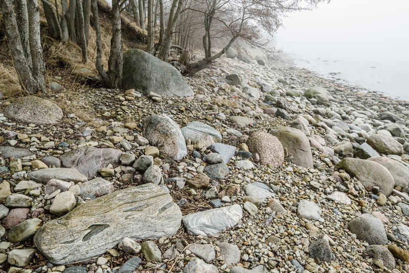 Stenig kust av havet i en dimma royaltyfri bild