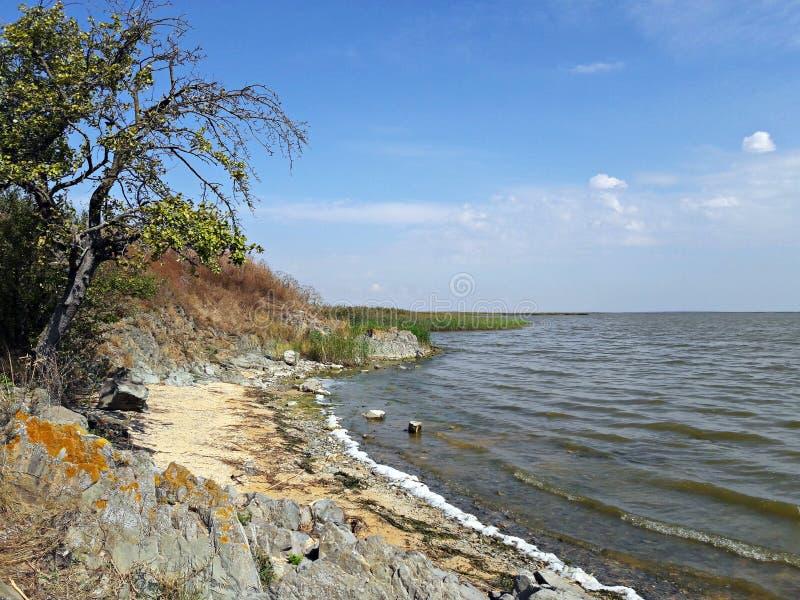 Stenig kust av Razim sjön, Rumänien arkivfoto