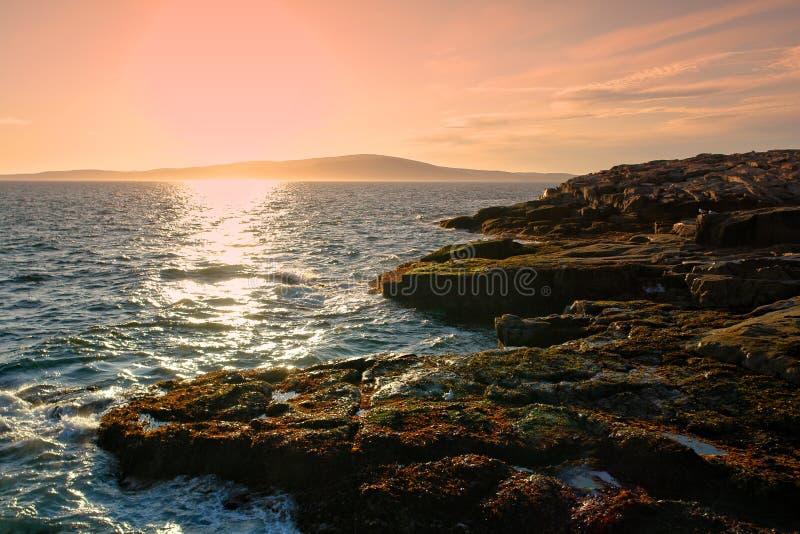 stenig kust för acadiakustmaine nationalpark arkivbilder