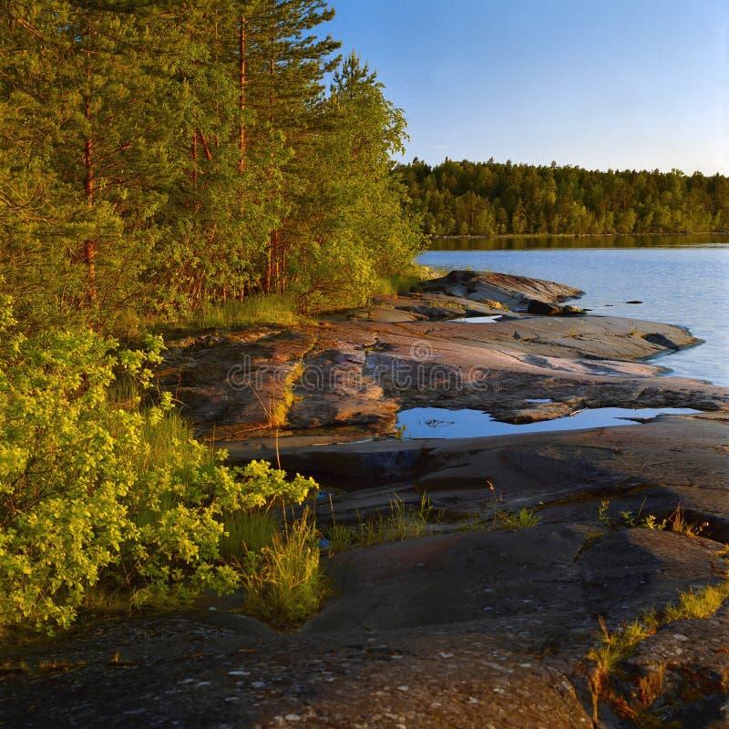 stenig kust för aftonladoga lake royaltyfria foton